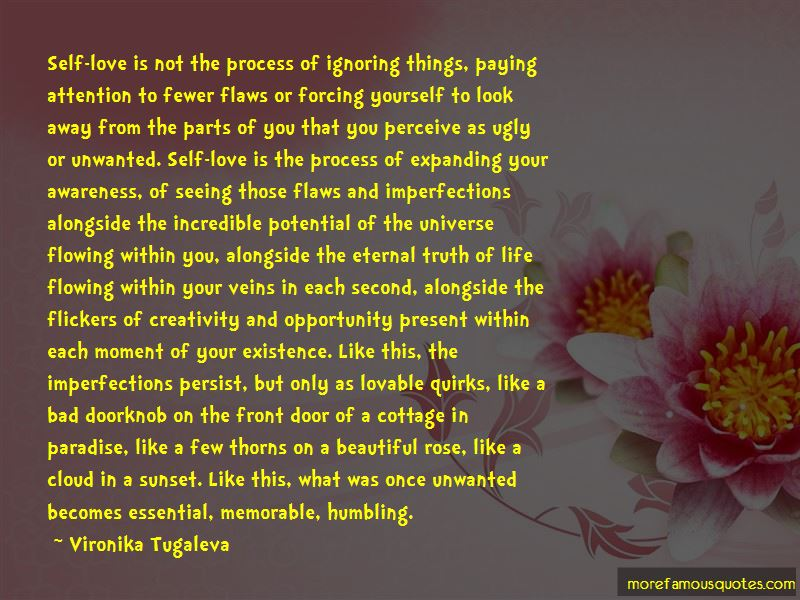 Flaws And Imperfections Quotes Pictures 3