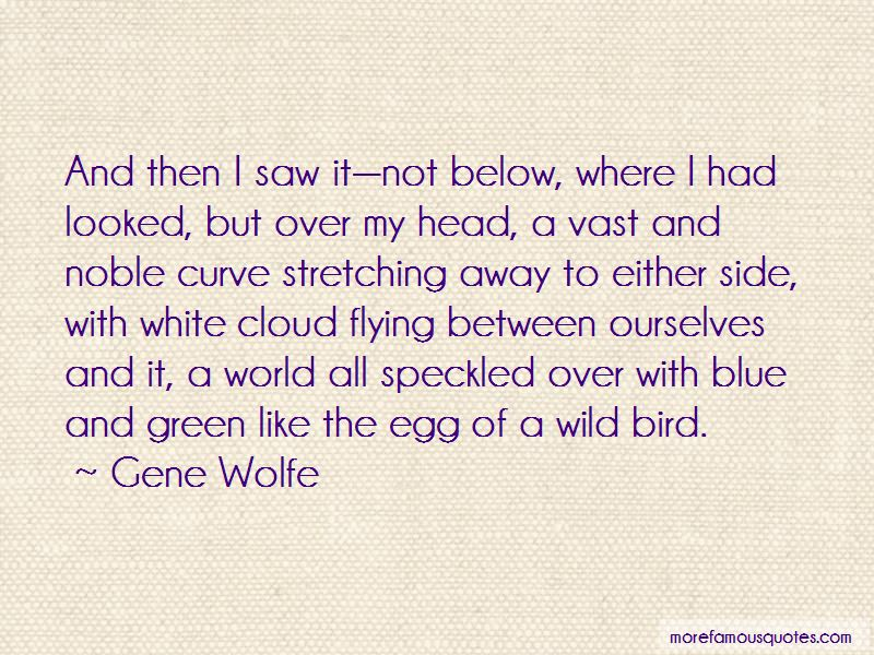 Quotes About Flying Away Like A Bird