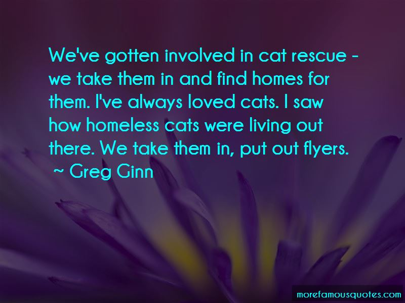 Quotes About Homeless Cats