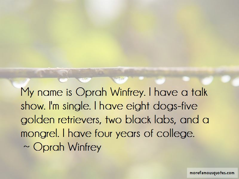 Quotes About Labs Dogs