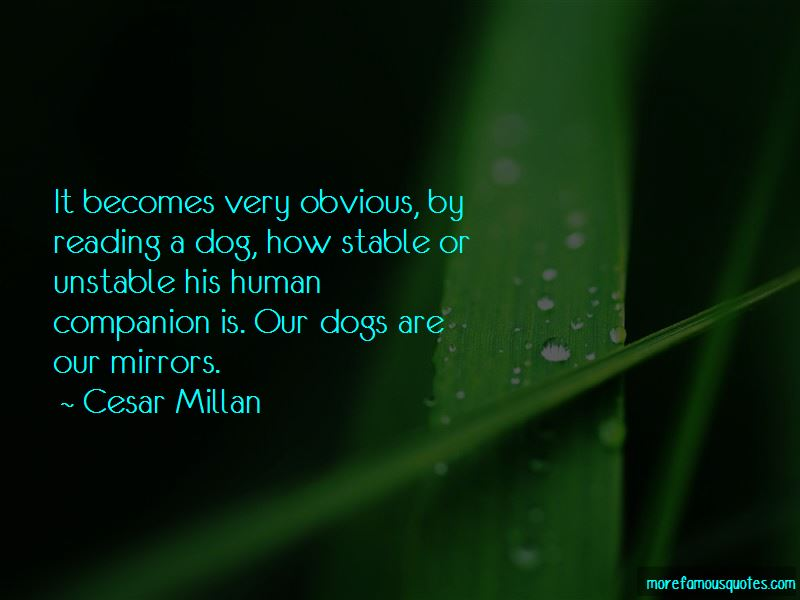 Quotes About Mirrors