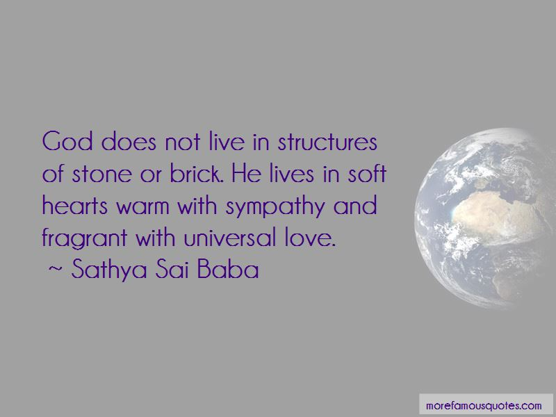 Soft Hearts Quotes Pictures 2