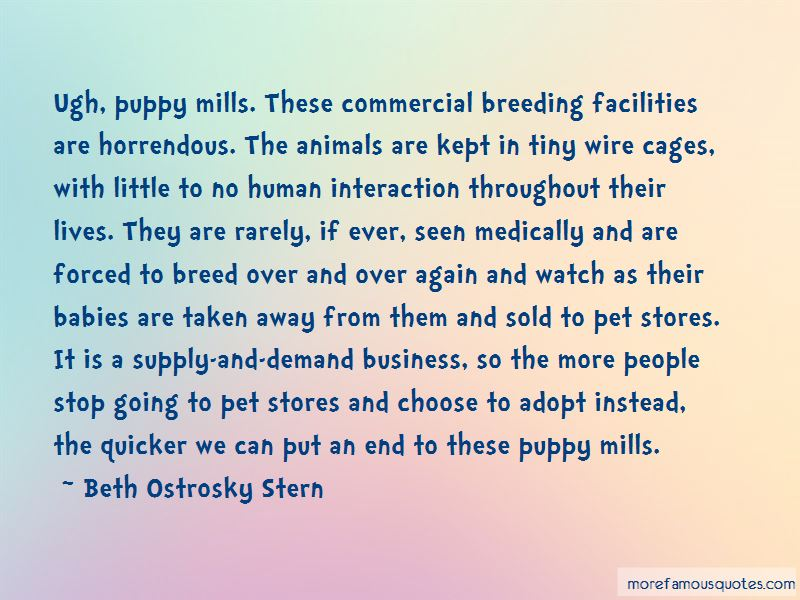 Adopt Animals Quotes Pictures 2