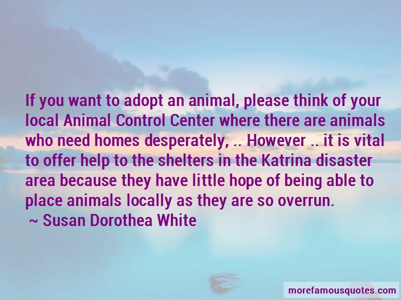 Adopt Animals Quotes Pictures 4