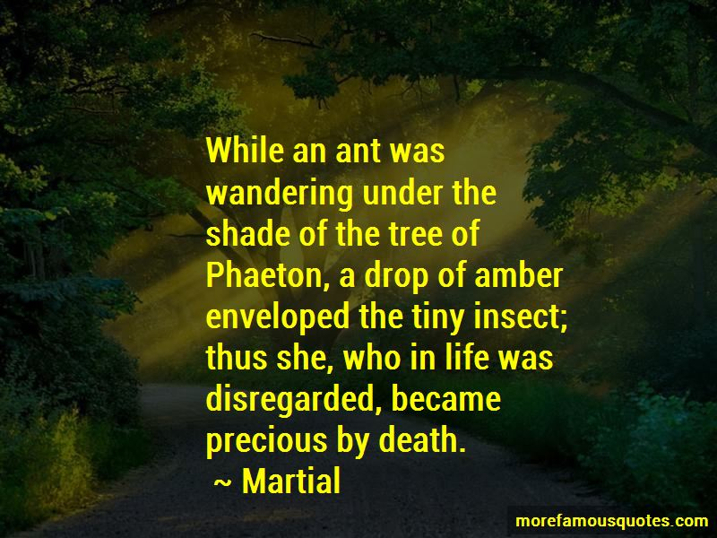 Ant Life Quotes Pictures 4