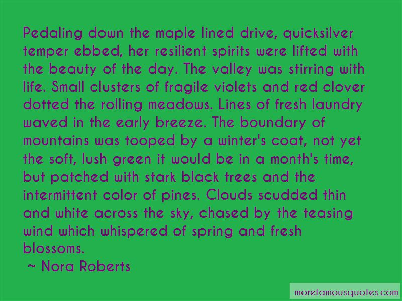 Clouds Lifted Quotes Pictures 4