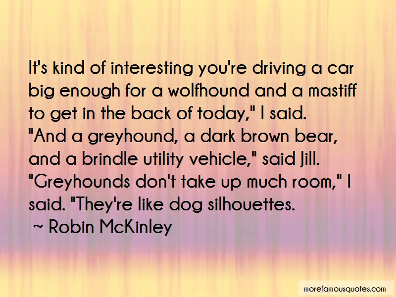 Dog Driving Car Quotes Pictures 4