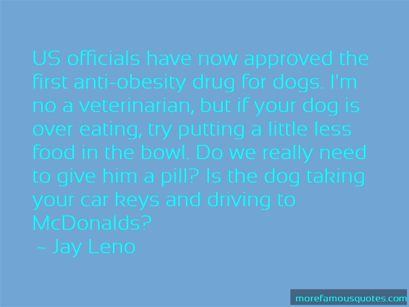 Dog Driving Car Quotes