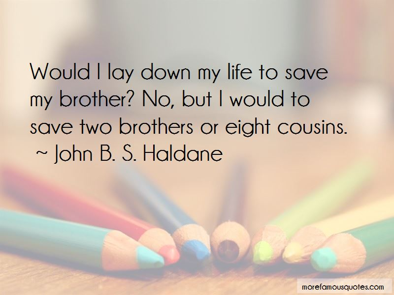 Eight Cousins Quotes