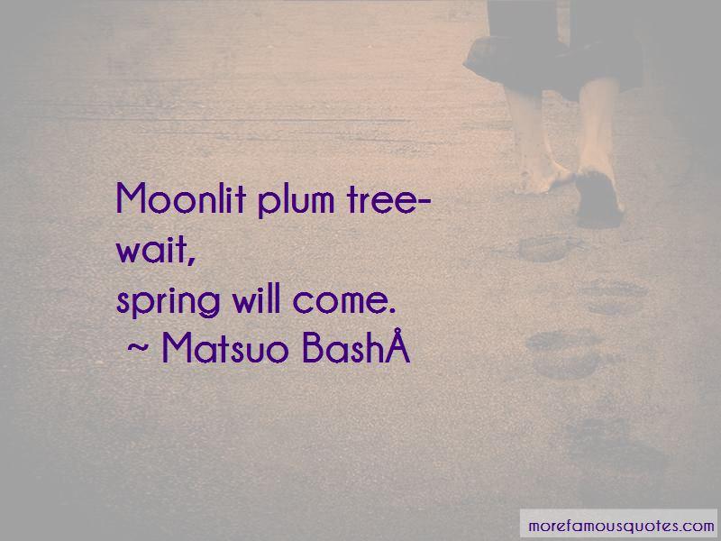 Plum Tree Quotes Pictures 2