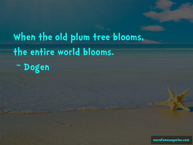 Plum Tree Quotes Pictures 3
