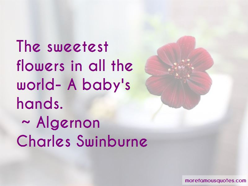Quotes About A Baby's Hands