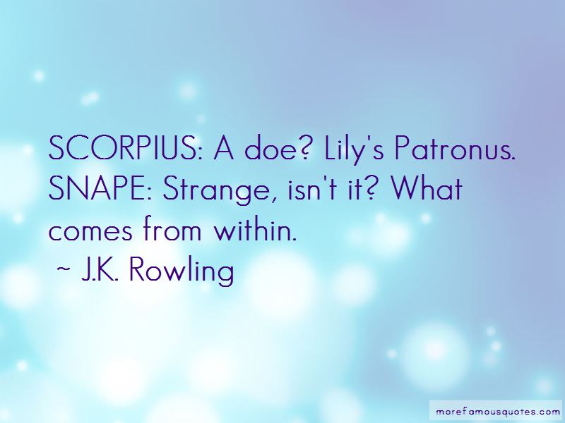 Quotes About Lily's