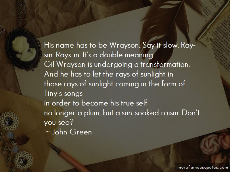 Quotes About Sunlight In A Raisin In The Sun