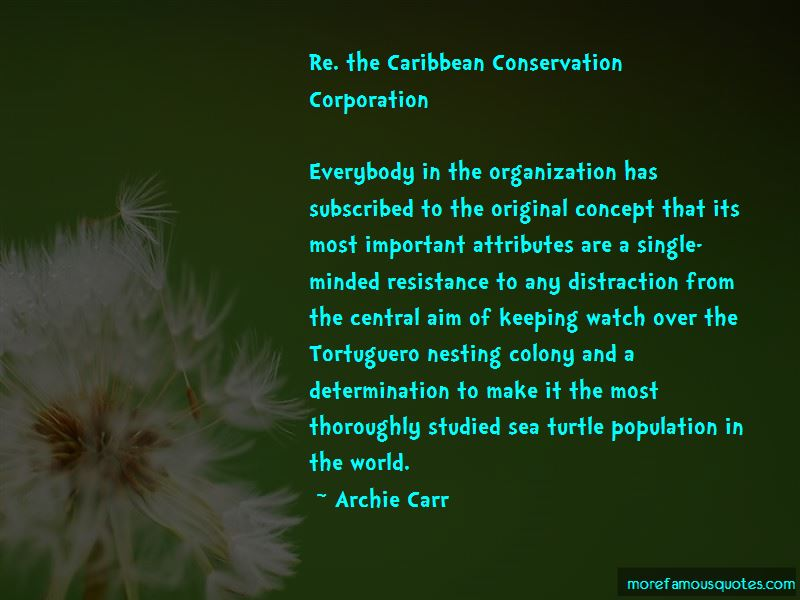 Quotes About Turtle Conservation
