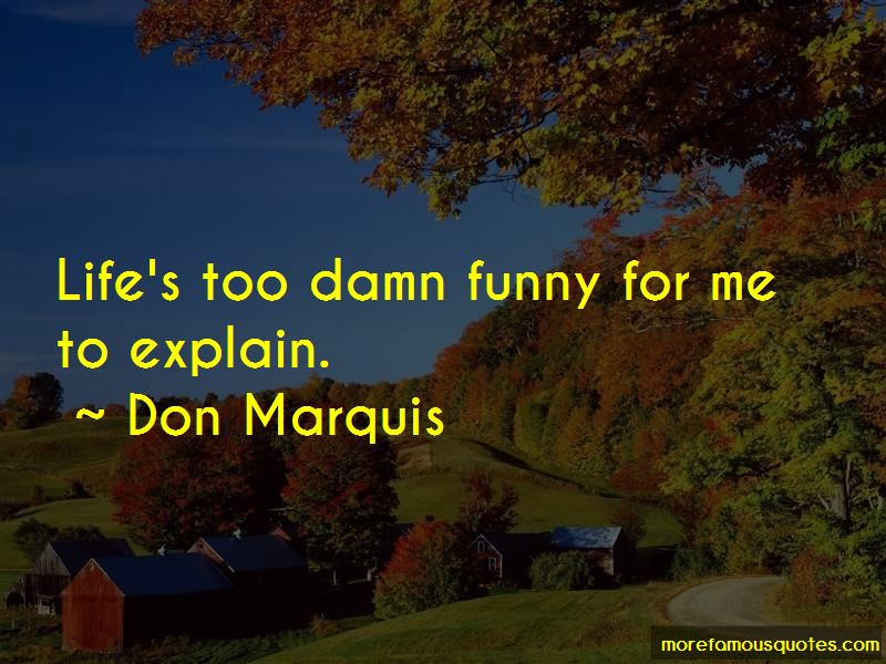 Too Damn Funny Quotes