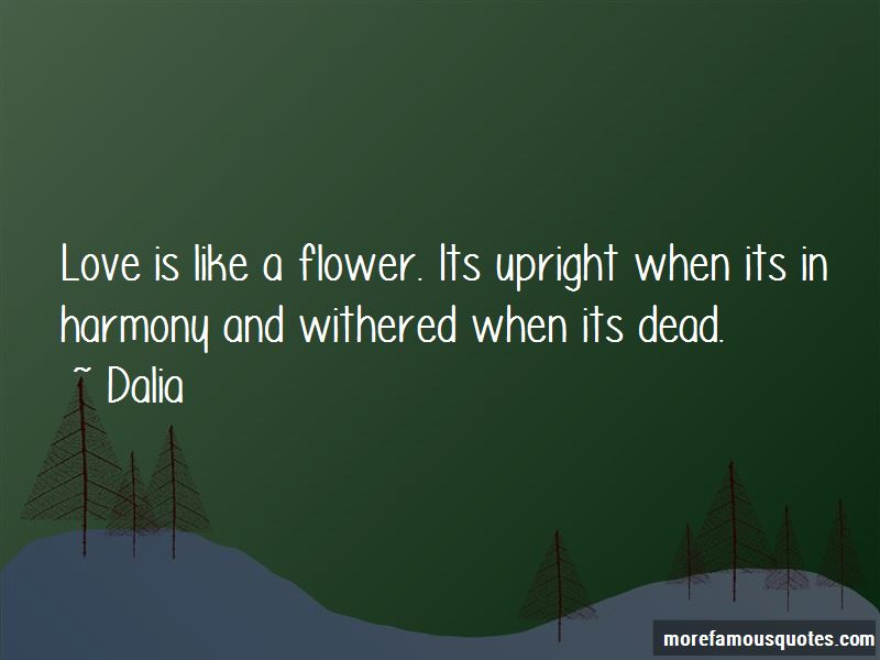 Love Is Like A Flower Quotes