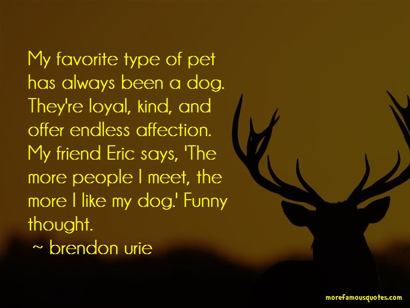 My Favorite Dog Quotes Pictures 2