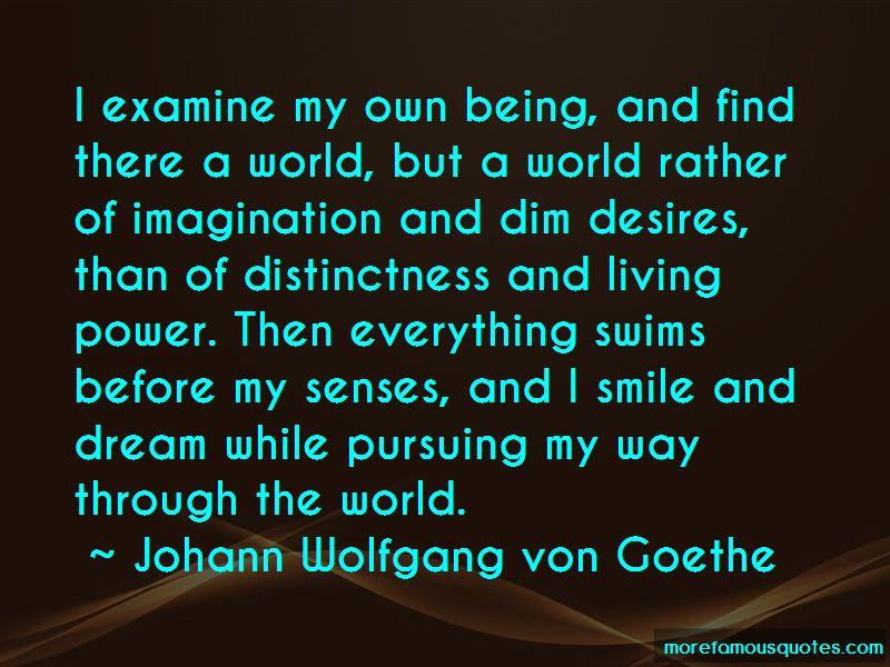 Pursuing A Dream Quotes Pictures 4
