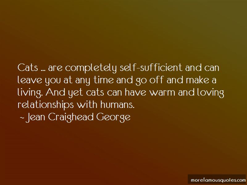 Cats And Humans Quotes Pictures 2
