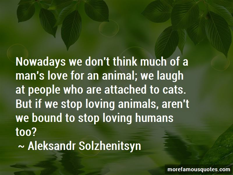 Cats And Humans Quotes Pictures 3