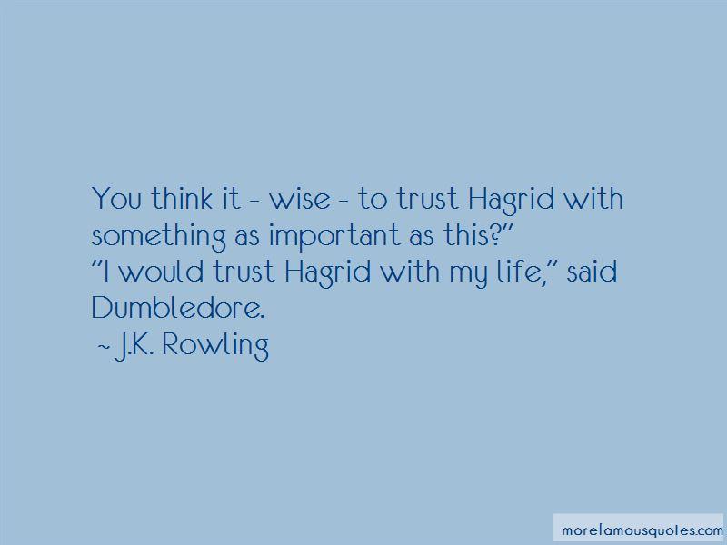 Life Dumbledore Quotes Pictures 4