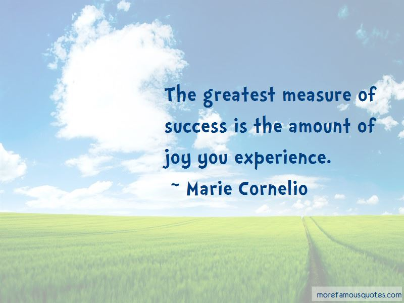 Measure Of Success Quotes Pictures 3