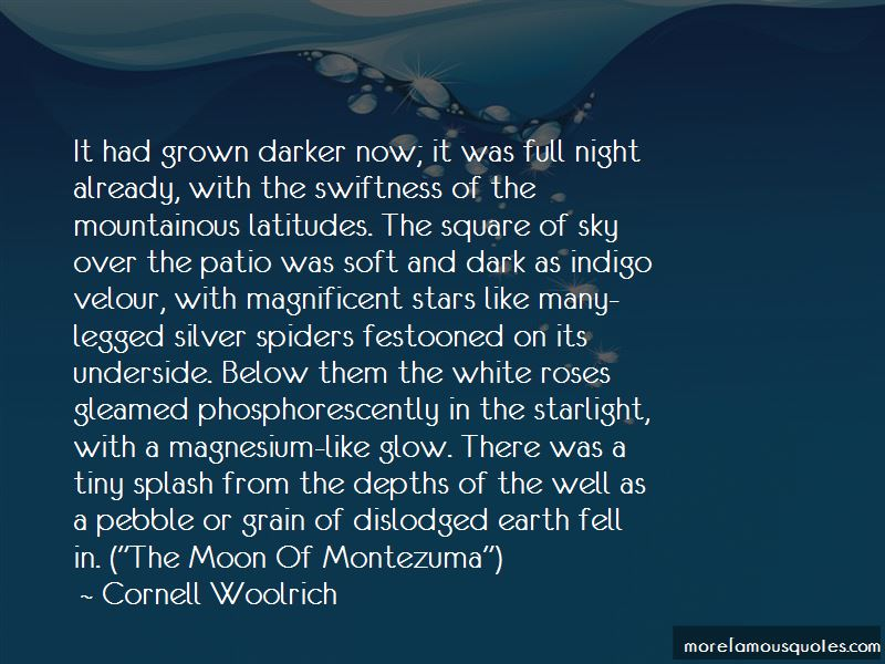 Night And Moon Quotes Pictures 4