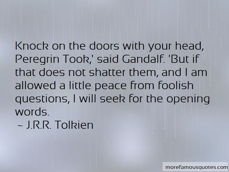 Quotes About Peregrin Took