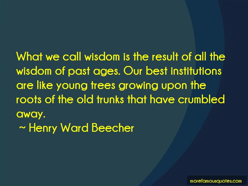 Trees And Roots Quotes Pictures 2