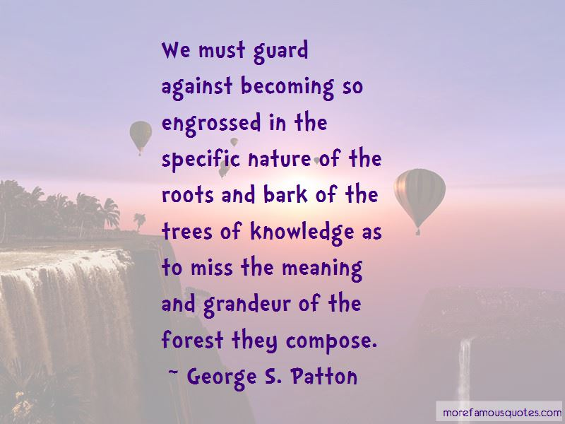 Trees And Roots Quotes Pictures 3