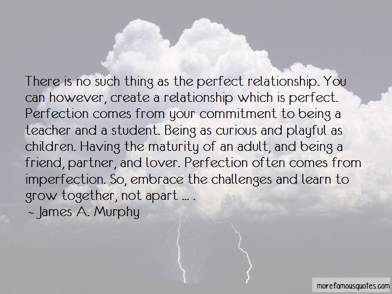 There No Such Thing Perfect Relationship Quotes Top 1 Quotes About