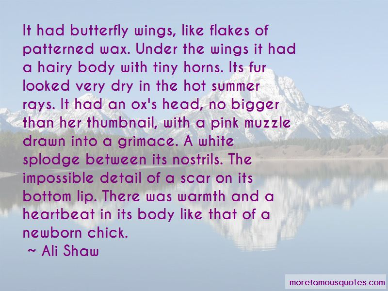 Body Wax Quotes Pictures 4