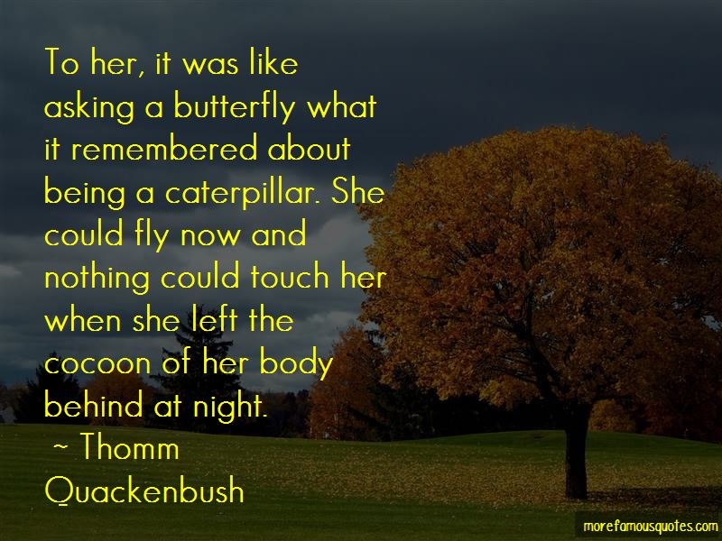 Caterpillar Cocoon Butterfly Quotes Pictures 4