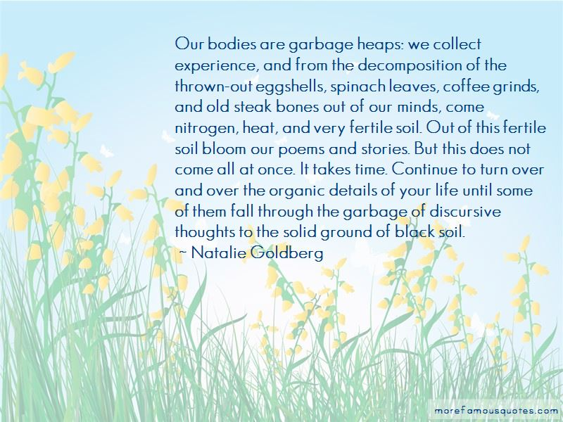 Quotes About Eggshells