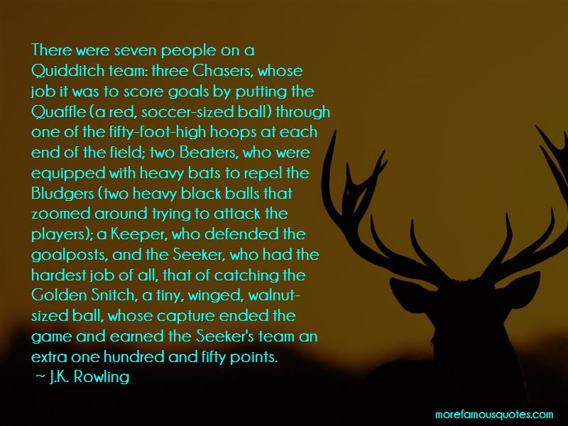 Quotes About Golden Snitch