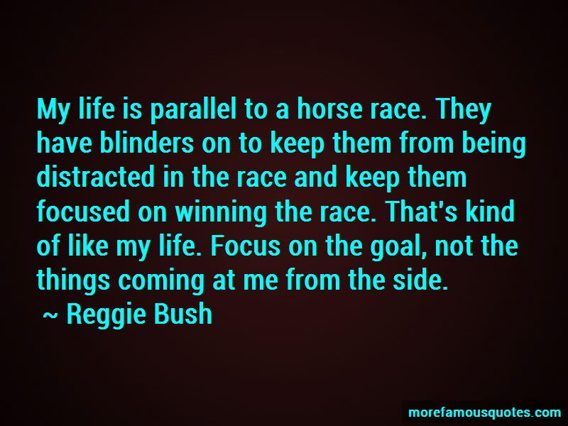 Horse Blinders Quotes Pictures 2