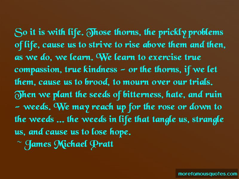 Problems And Trials In Life Quotes Pictures 3