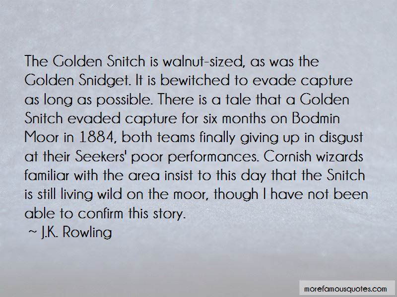 Quotes About The Golden Snitch: top 2 The Golden Snitch ...