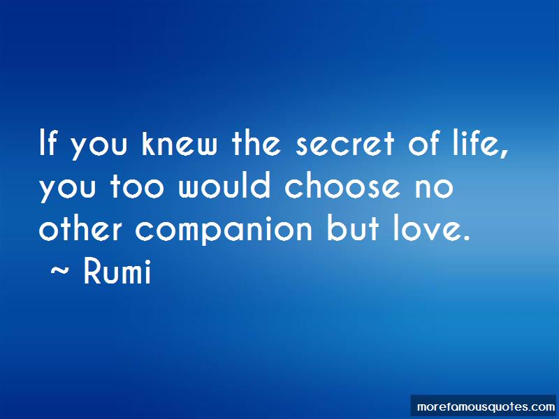 The Secret Of Life Quotes Pictures 3