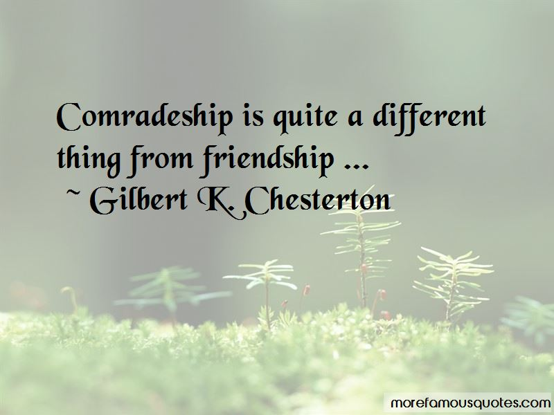 37 Friendship Quotes