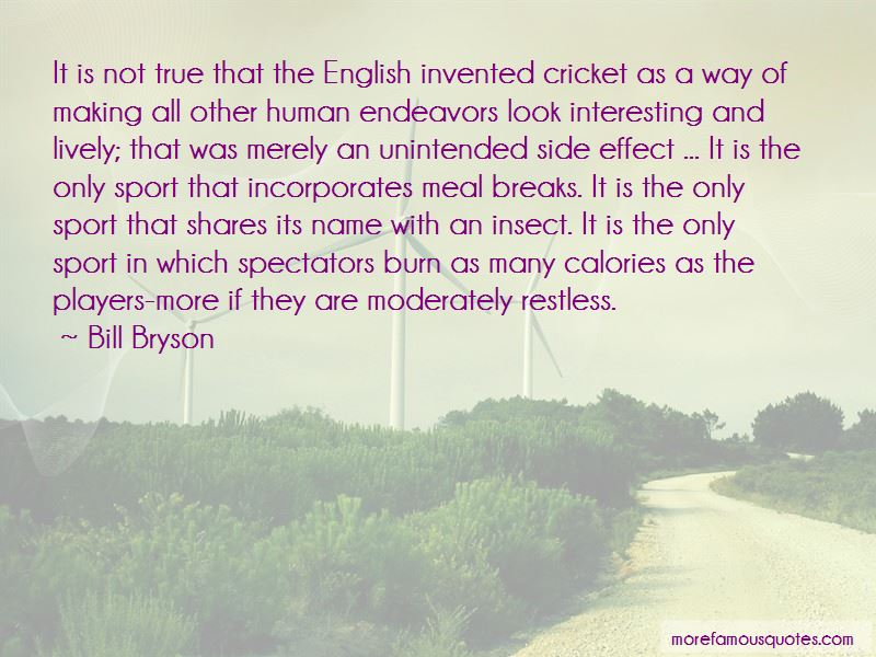 Cricket Insect Quotes