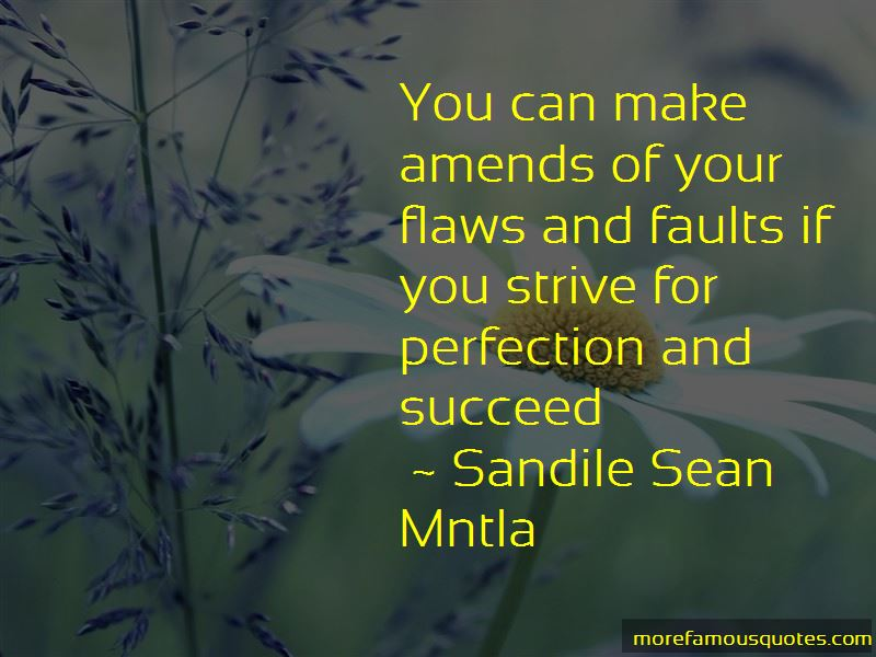 Flaws Make Perfection Quotes Pictures 2