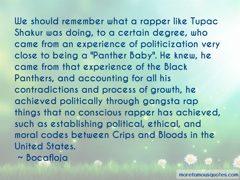 Bloods And Crips Quotes Pictures 3