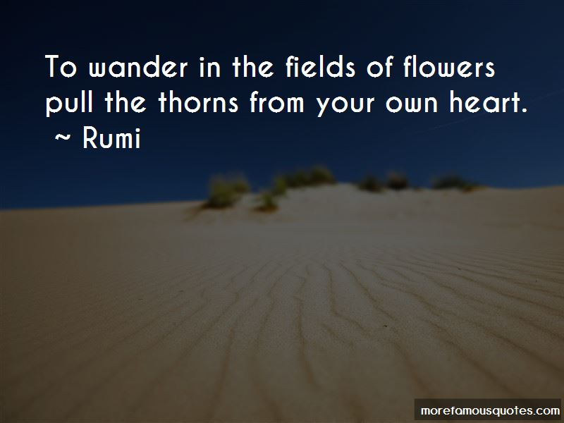 Quotes About Fields Of Flowers