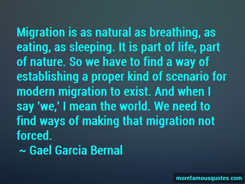 Forced Migration Quotes Pictures 3