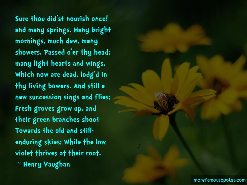 Quotes About Hearts And Wings