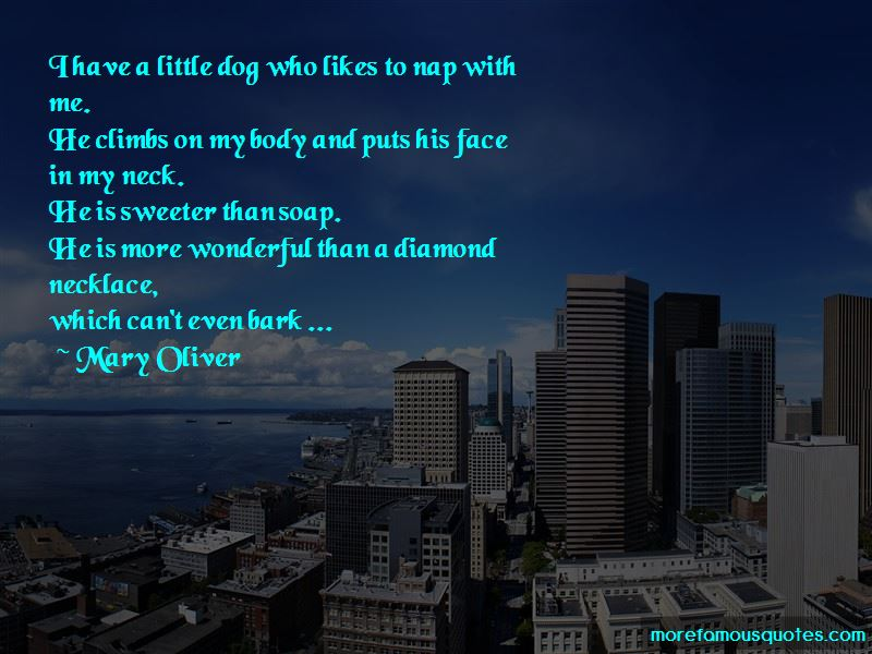 Diamond Necklace Quotes Pictures 3