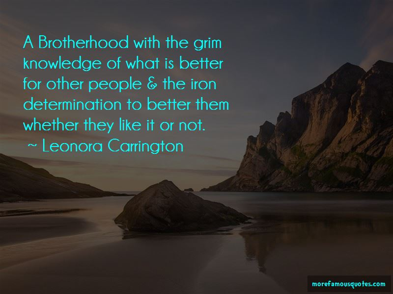 Quotes About A Brotherhood