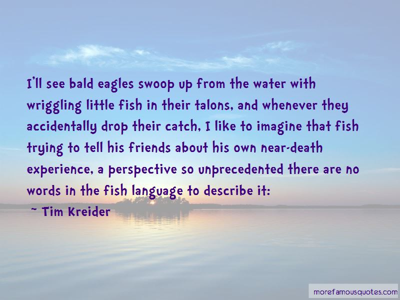 Bald Eagles Quotes Pictures 2